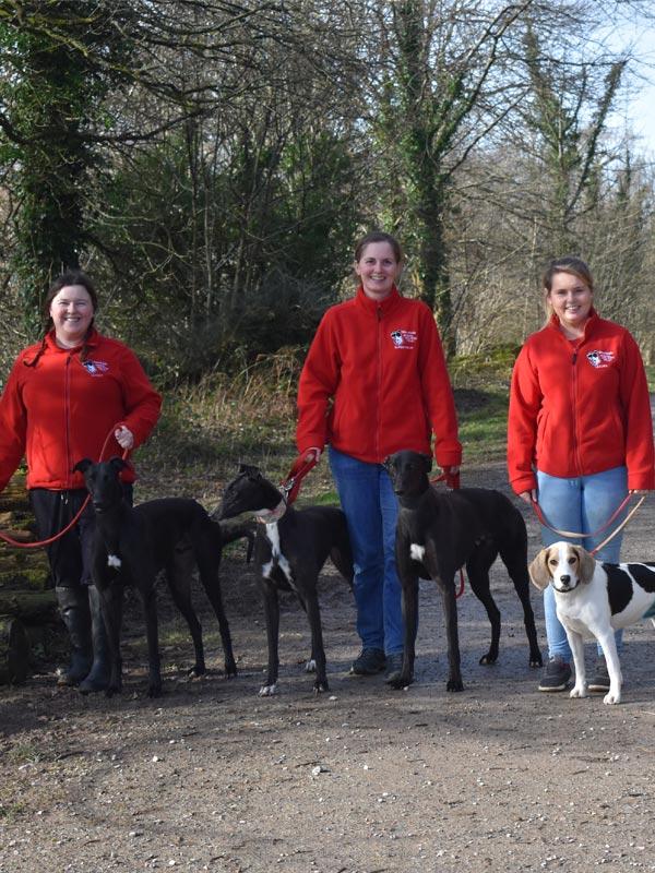 Volunteers taking dogs for walk